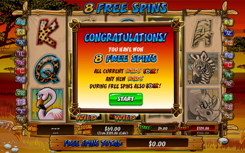 Free spins in Wild Gambler